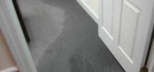 Soaked Carpet From Water Damage